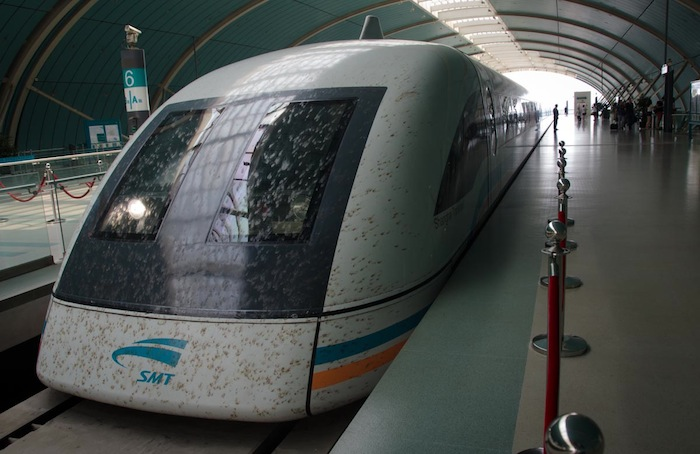 Maglev caught a lot of flies